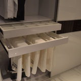 حديث غرفة نوم أثاث لازم ينزلق/[أبن دوور] خزانة ثوب مقصورة (مصنع إمداد تموين مباشرة)