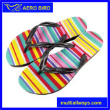 Zapatillas de deporte de las sandalias de la playa de las mujeres del PE del estilo ocasional