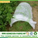 Stabilisierte UVpp. nichtgewebt für Bodendeckel