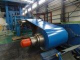 Горячая окунутая гальванизированная стальная катушка /PPGI катушки (цвета)