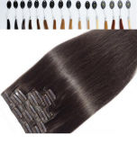 Hair Extensionの二重Weft 100%年のHuman Hair Clip