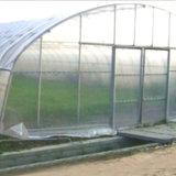 Het gemakkelijk Geïnstalleerdez Landbouw Groene Huis van de Tunnel met de Directe Verkoop van de Fabriek