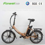 "20 "" 250W Folding Electric Bike (TDN02Z-3)"
