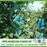 Sacchetti non tessuti della banana di protezione UV