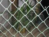 電流を通される/PVC上塗を施してある高い専門家耐食性のチェーン・リンクの塀
