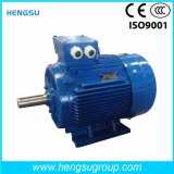 Ye3 45kw-8p Three-Phase WS Asynchronous Eichhörnchen-Cage Induction Electric Motor für Water Pump, Air Compressor