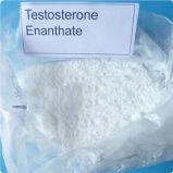 Testosterona Enanthate de los esteroides anabólicos para la construcción eficaz de los músculos