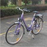 """28 """", 250-500W Stadt Electric Bicycle Tdb01z"""