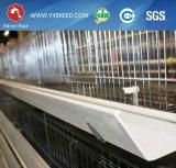 Quaglie che coltivano le gabbie di strato dell'azienda avicola (4L120)