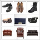 布/靴/革/ファブリックレーザーの彫版及び打抜き機