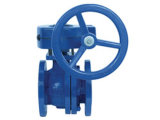 10k/20k Cast Iron Rising Stem JIS Gate Valve