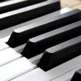 Zone blanche de piano à queue