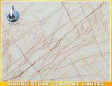 Plak van de Spin van de fabriek de Directe Marmeren Gouden
