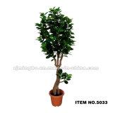 Planta verde artificial 5034 de la nueva venta caliente
