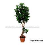 Planta verde artificial 5034 da venda quente nova