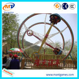 遊園地装置のManu Facturers Ferrisのリング車