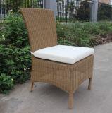 H 중국 정원 등나무 고리 버들 세공 식사 의자