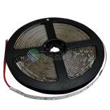 Wasserdichtes IP65 2835 60LEDs LED Seil-Licht für Qualität