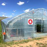 2016 het Beste LandbouwPlastiek Behandelde Groene Huis van de Tunnel