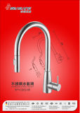 Steel di acciaio inossidabile Kitchen Sink Faucet con Pull Down Spray Head