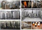 Apparatuur van het Bier van de Lopende band van het Bier van de Brouwerij van de Apparatuur van het Bier van de Apparatuur van het Bierbrouwen de MiniVolledige