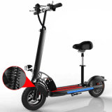 600W F/Rの中断が付いている電気蹴りのスクーター