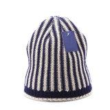 メンズレディース男女兼用のツイスト編まれた冬の暖かい帽子の厚い帽子(HW416)