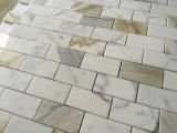 Calacatta tuile Polished de mosaïque de brique de marbre or 1X2 ''