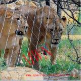 ライオンのためのステンレス鋼ロープの網