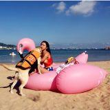 Kundenspezifischer Einhorn-Flamingo-Pool-Gleitbetrieb Belüftung-6p aufblasbarer