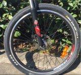 Materiale d'acciaio della forcella e bicicletta elettrica sì d'addestramento del nuovo modello delle rotelle (OKM-878)