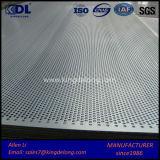 Lamiera sottile perforata della rete metallica di alta qualità/lamiera sottile di perforazione
