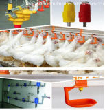 Set cheio Automatic Poultry Farming Equipment para Broiler