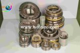 De groefkogellager van A&F Bearing/Deep/Tapered rollager/lager Spherical/lager Roller/Ball die 6204 tot 6240 dragen