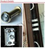 Porte en acier en métal de porte de garantie de porte extérieure de porte (SC-S146)
