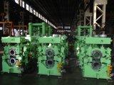 Nueva instalación de laminación en caliente para el Rebar y el alambre de acero/la máquina de laminado en caliente