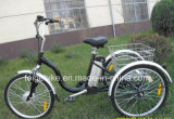 Elektrisch sta Pedelec Volwassen Bromfiets Met drie wielen de Met drie wielen van Trike PAS Trike (ETR010) bij