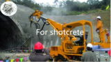 Fibra do aço de Shortcrete