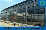 販売のためのHydroponicシステムが付いている工場価格のパソコンシートの温室