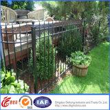 Ferro feito do jardim clássico que cerc com porta