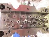 Inyección de moldes de plástico
