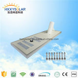 China 100W todo en una luz de calle solar integrada del LED para el jardín/el cuadrado
