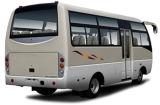 Kingstar Neptuno D6 28 asientos del autobús, autocar, autobús Luz