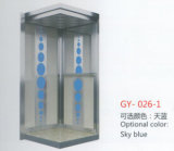 250kg, 320kg, 400kg Capacity Gearless Small Home Villa Elevator
