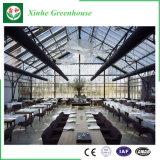最もよい照明のレストランのためのガラス鉄骨構造の温室