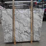 Tuiles Polished de marbre normal de brame de vente en gros de ville de Yunfu, marbre blanc de l'Italie Arabescato