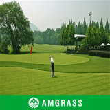 High Density Synthetic Golf Putting Green Grass (AC-10PP)