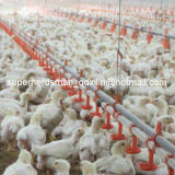 Broiler를 위한 가득 차있는 Set Automatic Poultry Farm Equipment