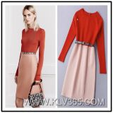 Elegant Bureau de Kleding van Dame Dress Winter Long Sleeve Wol