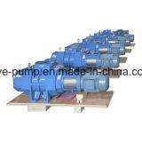 Bomba mecánica de las raíces usada en las máquinas de la vacuometalización de PVD
